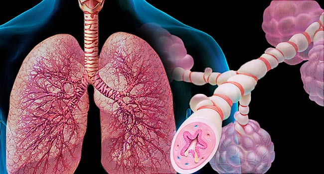 Can Asthma be cured and how to stay safe from it ?